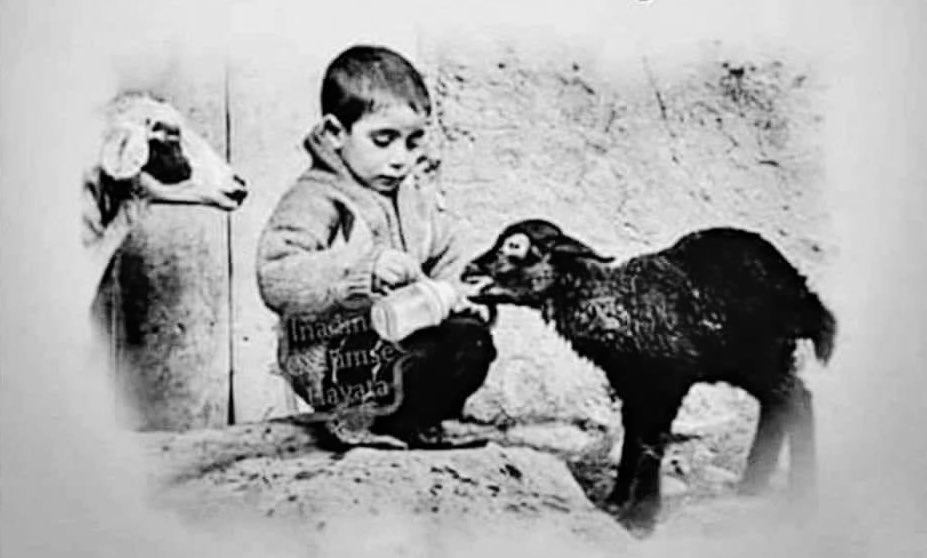 RT @murat25504102: İnsan olmak ne din işidir ne eğitim ne para insan olmak sadece vicdan işidir... https://t.co/0K6ouFZuz5
