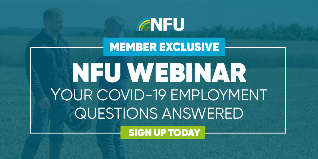 This time on Thursday our employment experts will be answering your coronavirus related questions on a live webinar 💻 Register now by speaking to NFU CallFirst or by logging in to NFU Online ow.ly/ag1A50AhCvi