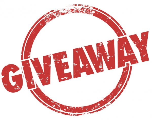 Mystery Give Away  𝐓𝐨 𝐞𝐧𝐭𝐞𝐫   1. Follow  @NieceMotorsport and @iRacing   2. Tag friends & RT    Winner selected 7/6/2020    Good Luck!  #tuesdayvibes #Giveawaypic.twitter.com/T72BykTpMH  by Niece Motorsports