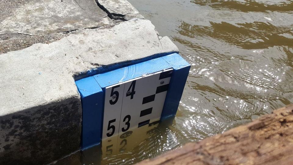 Wisła coraz wyżej. Woda zalewa tereny nad rzeką - Polskie Radio PiK https://t.co/C5QlW8hKGL https://t.co/IzpqsdGdgw