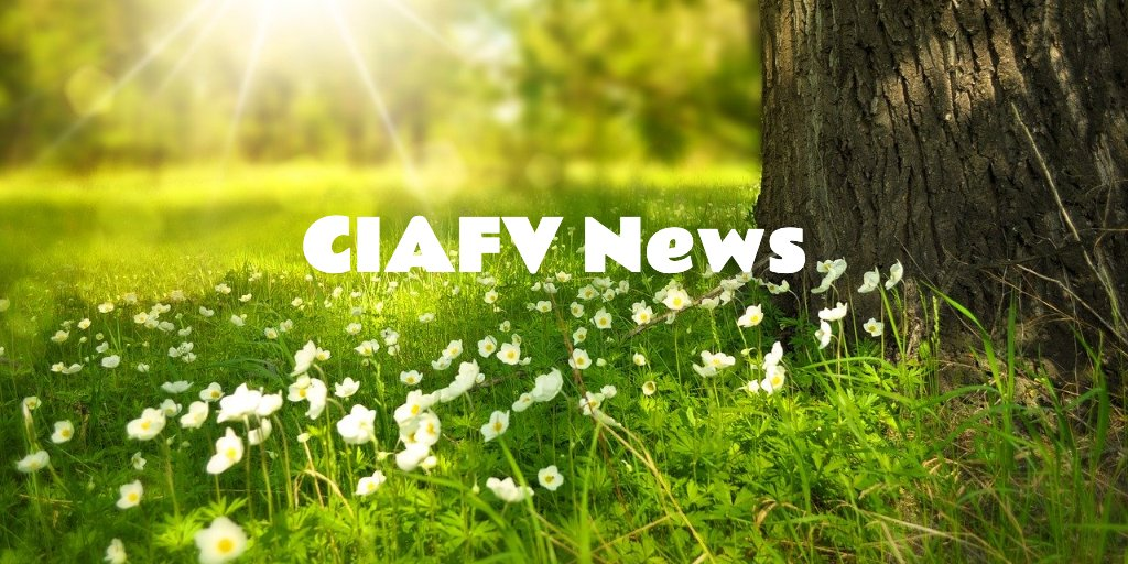 test Twitter Media - CIAFV News: Clare's Law Survey & Training in July https://t.co/VnlhI2LZ91 https://t.co/prPDDTOF3x