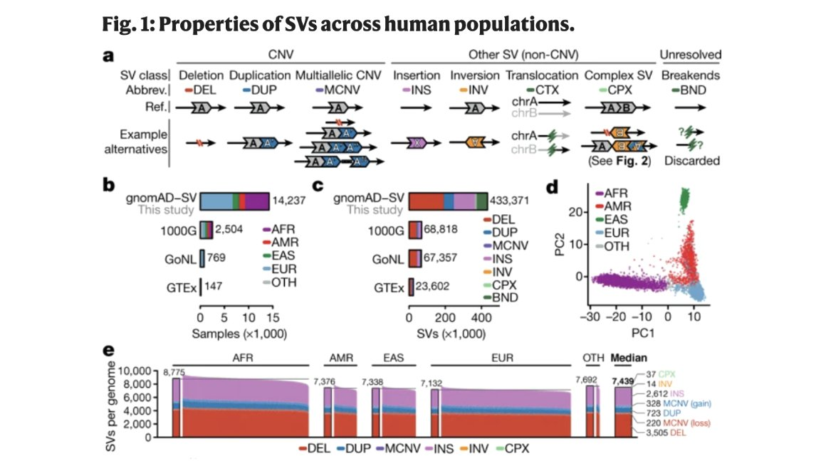 Collins et al. 2020 recently #published a reference of sequence resolved-structural variants generated from nearly 15,000 genomes (54% non-Europeans) in #gnomAD, including data from another #SFARI cohort, the Simons Simplex Collection. https://t.co/uFmhZlcGr6 https://t.co/uyg7JxlhZX