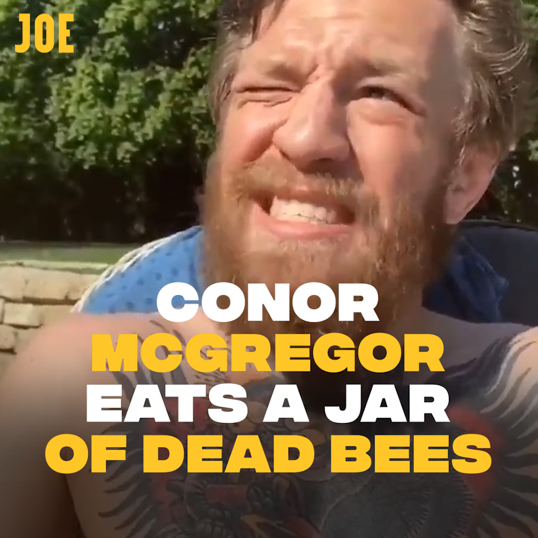 People are eating bees now. So add that to the list of 2020 bullshit.