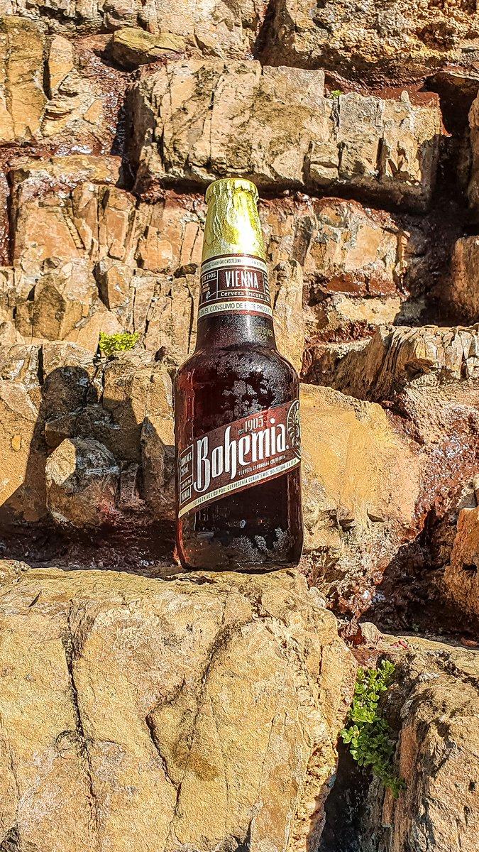 #Mamartes de #Cheve, hoy traemos la #bohemia Vienna, que les parece?   🍺 Bohemia Vienna 🏷 Vienna Internacional 🥴 4.9% Alc. Vol. 💧 355 ml 📍 Monterrey, N.L  💸 $18.5 mxn aprox. c/u ©LordCerveza . #beer #cerveza #Vienna #heinekenmexico #lordcerveza https://t.co/4P2ai28qWI