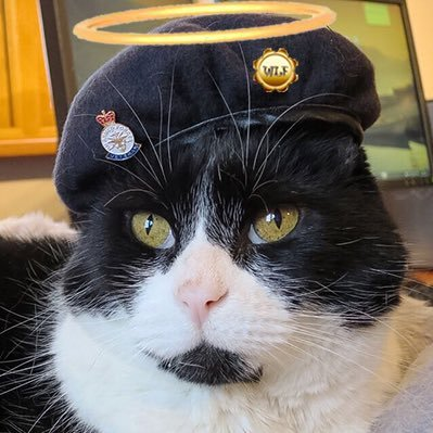 @Mr_Pie @myjaffa @LilyLuWhoT @Midnightpurrs @Admiralhester1 @wlfmadhatter @tiddlesfry @mnummy_maggot Twas an honour riding furrr yooo Mince.  Boootifurrrl words; and pals, Mince will still be visiting us more den occasionally  !!! ❤❤❤❤❤❤❤❤❤❤❤❤❤❤❤❤❤❤❤🙏🌈🙏🌈🙏🌈🙏🌈🍻🍻🍻🍻🍻🍻🍻 @Mr_Pie #WLF #WLF10THBATTALION https://t.co/rRjXjQXYEz