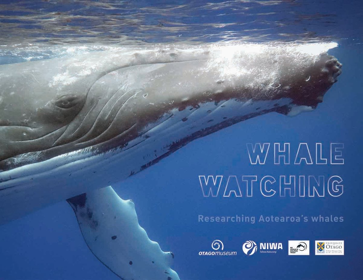 We are thrilled to announce that 4 July will premiere our newest special exhibition in the Beautiful Science Gallery, Whale Watching – Researching Aotearoa's Whales. https://t.co/M4fpPDaVgv