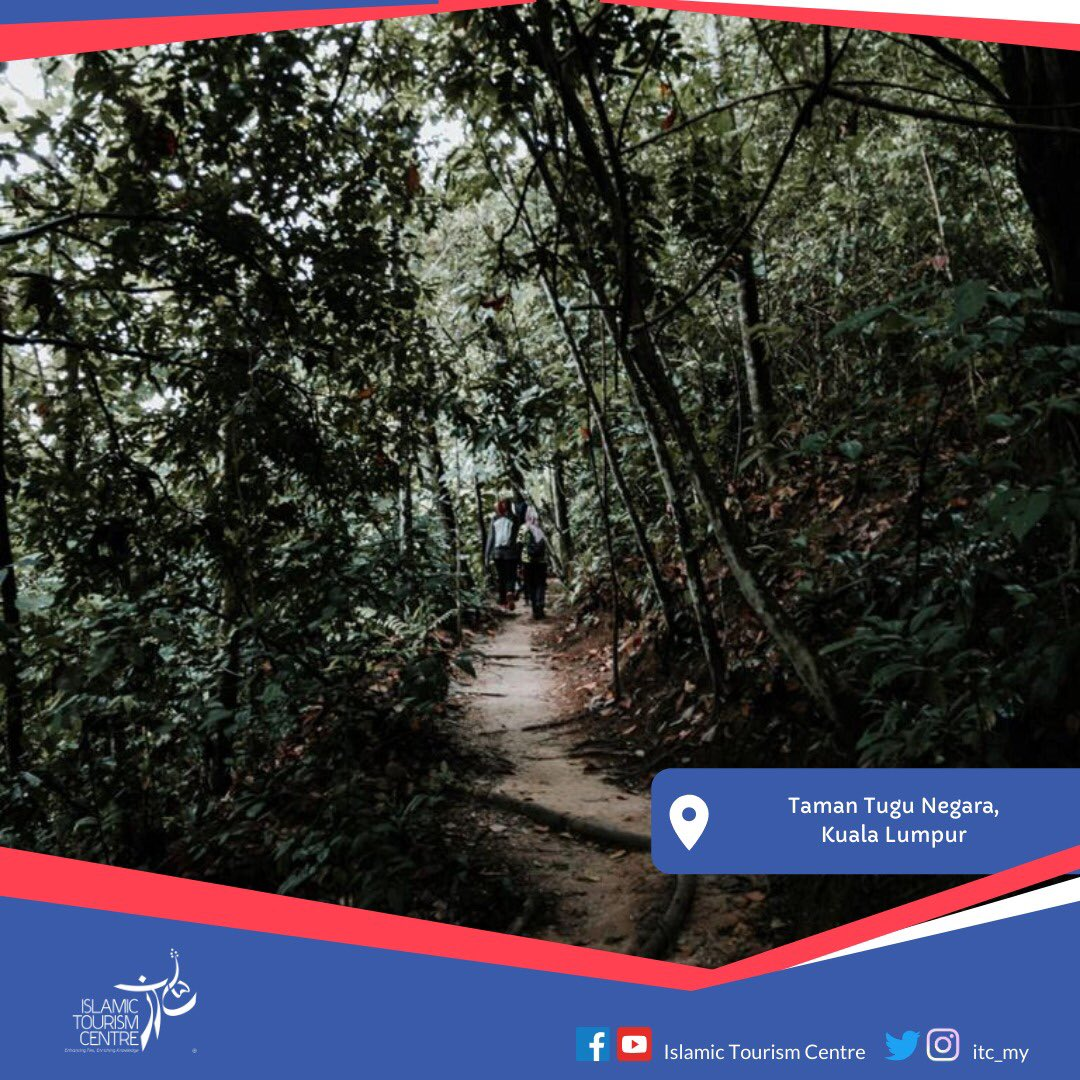 Taman Tugu is one of the hidden woodlands in Kuala Lumpur. It is located to the north of Taman Botani Perdana with Tugu Negara. https://t.co/PvGGtRadms