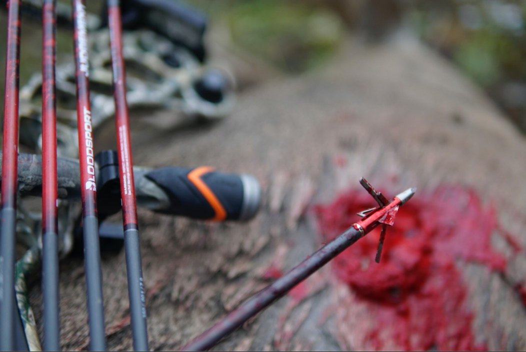 Bloodsport arrows and broadheads are designed to sail straight and sink deep, carving out massive wound channels for swift, ethical kills. Shop our top-selling products for your compound bow or crossbow here - bloodsportarchery.com