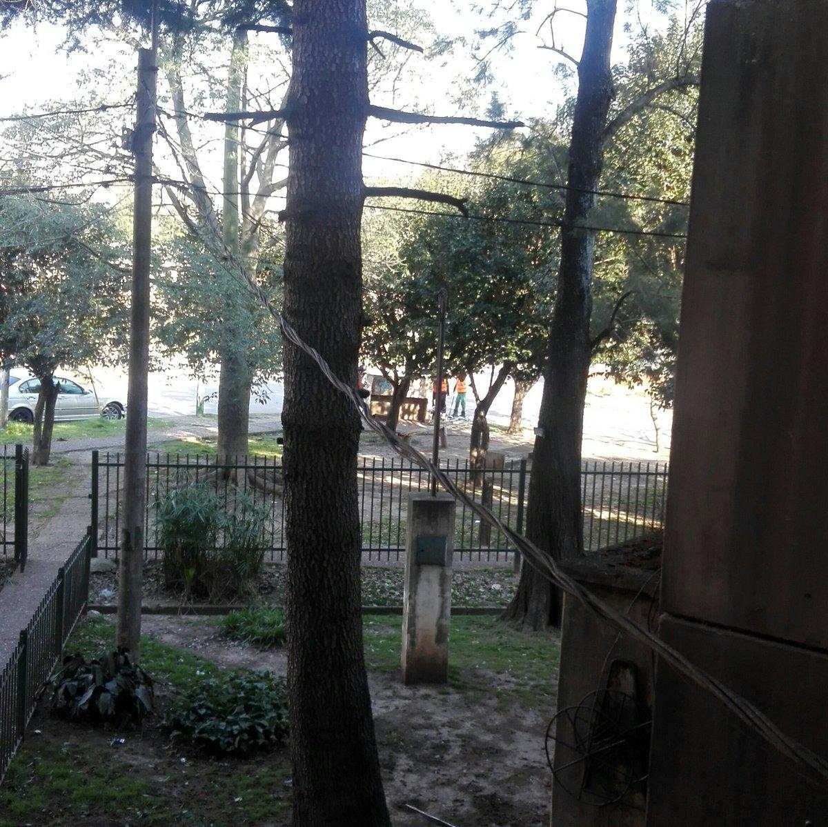 Hace 30 años que vivo en Don Orione. Es la primera vez que veo al municipio limpiando los basureros que no están en la av. Eva Perón. Gracias @CascallaresPJ https://t.co/CXa4MspGxs