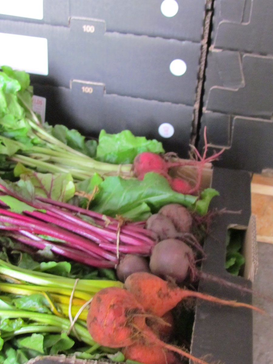 Mixed boxes of bunched beetroot, chioggia, golden and red, destined for @LangridgeOrg tonight