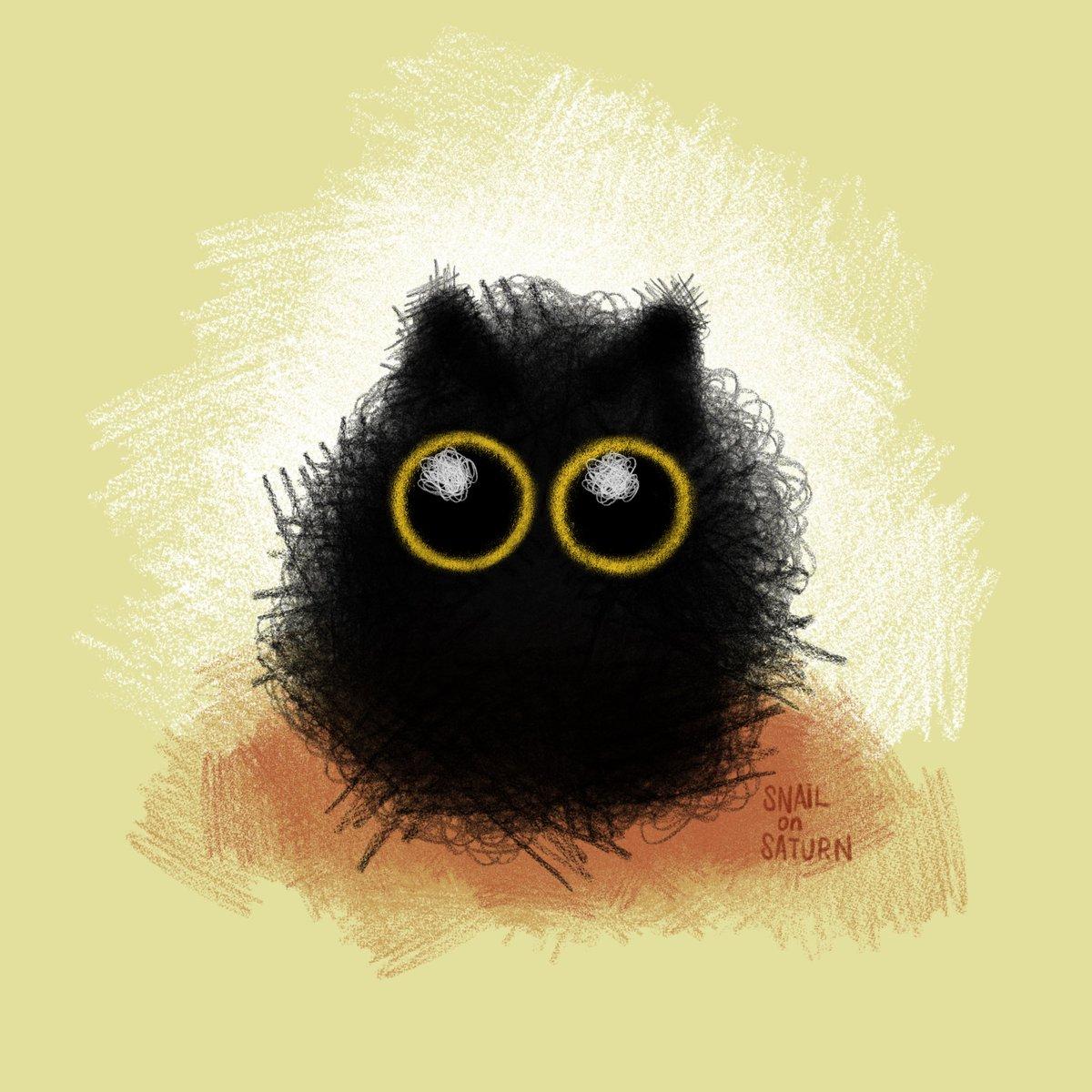 i am obsessed with black cats that just look like vaguely cat-shaped blobs of darkness 🖤  #digitalart #art #illustration #ipadpro #procreate #ipadart #drawing #cats #catart #sketch #blackcat https://t.co/kNxYC684Uz