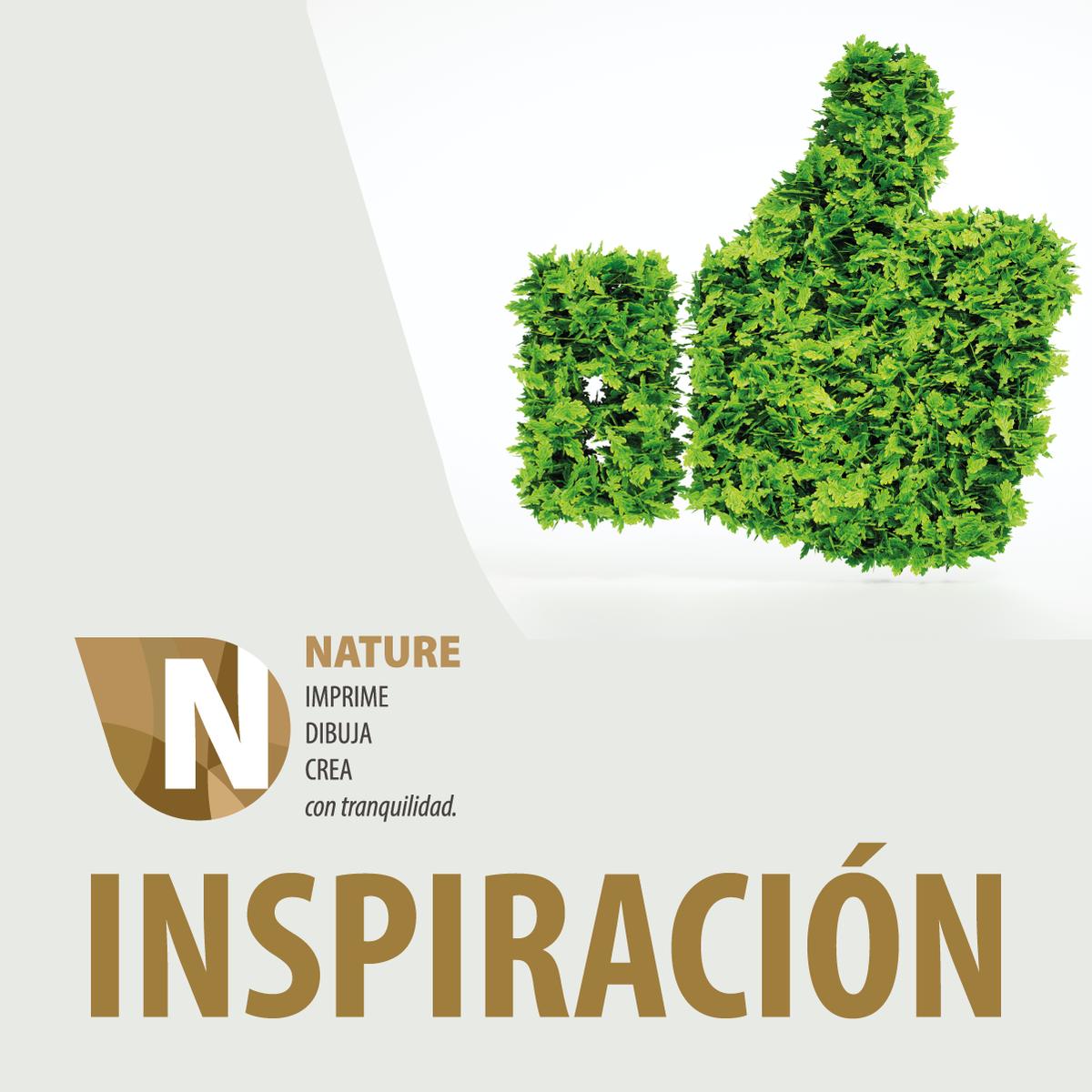 La naturaleza que nos rodea es fuente de nuestra inspiración. Contémplala y cuida de ella, es nuestra responsabilidad. #PEFC #Sustentabilidad #Biodegradable #Nature #CambiemosElMundo #Soñemospic.twitter.com/Sd1Pp9OzRc