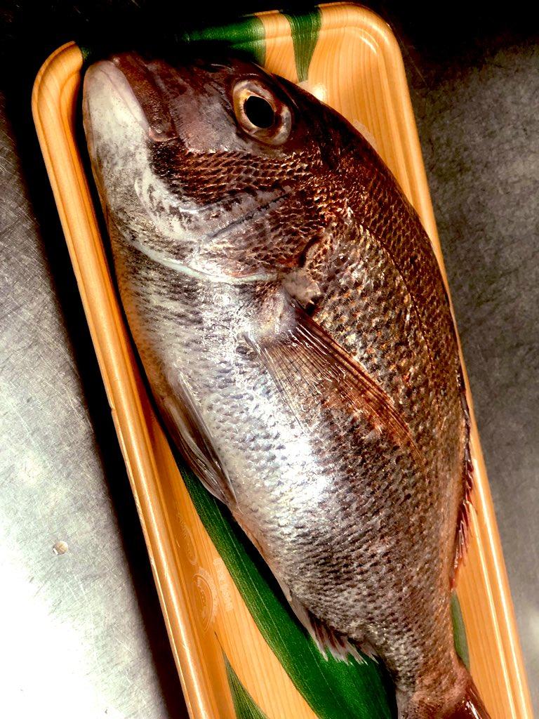 しごおわっ! 今日はおすすめで天然鯛のカルパッチョしましたん😋✨ 骨とか頭はあら汁にしてフード頼んでくれた方へサービス提供♨️ 今日もおつかれさんでした🙏  #料理 #料理好きな人と繋がりたい  #天然鯛 https://t.co/d7TX4wIPCS