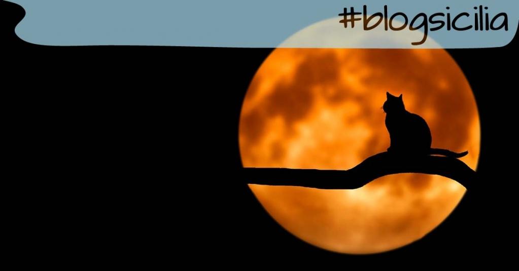 """""""Non trovare la colpa, trova il rimedio"""". Henry Ford  Buona serata da #blogsicilia"""