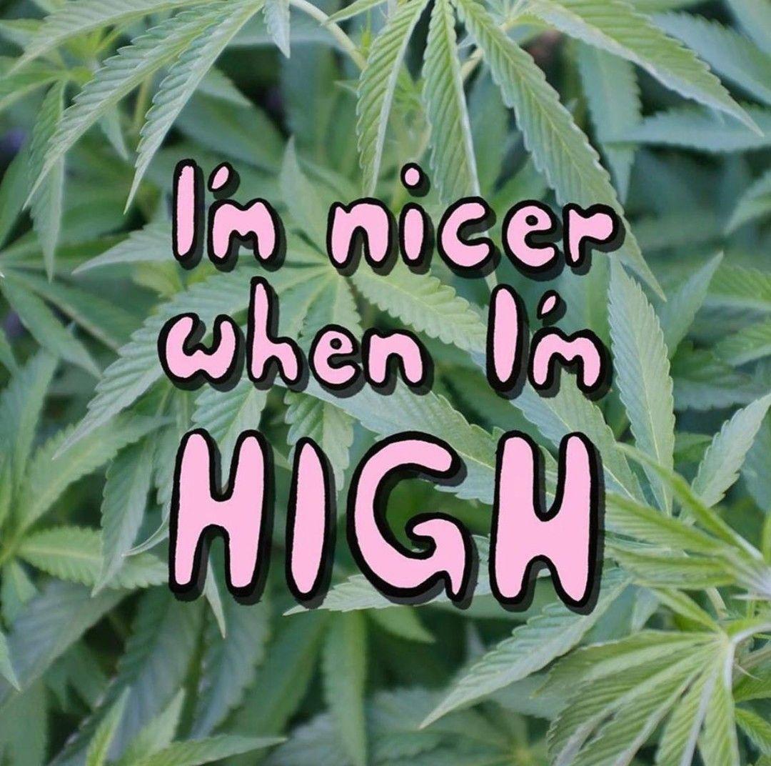 Aren't we all?  : @ high_beebee   #highvibes #liftedladies #womenofweed #elevated #ganjagirls #stonerchick #stonernation #cannabisinfluencer #womeninweed #litladies #kushqueens #girlswhosmokeweed #cannabiscommunity #hightimes #highlifepic.twitter.com/hUbn3z0zgu