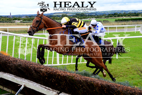 MACGILONEY @swflanagan7 jump the last to win the @RoscommonRaces Beginners Steeplechase for owner Michael Moloney and trainer @d_g_hogan see all the action on healyracing.ie