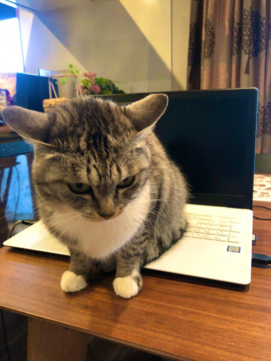 「フルスペック残業阻止機能搭載パソコン」
