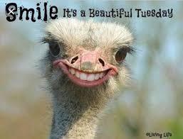 Good morning! Show me your smile!  #June #Tuesday #TacoTuesday #TravelTuesday #TuesdayShoesday #GoodNewsTues #TuesdayTunes #TakeMeBackTuesday #TastyTuesday #modernavonfashionista #avon #Idaho #MagicValley #JeromeIdaho #TwinFallsIdaho