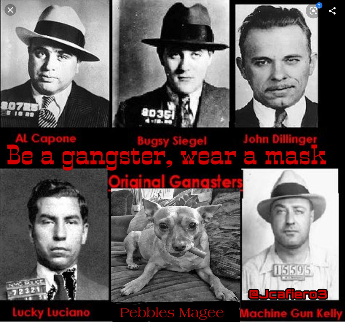 Pebbles Magee says,  be an Original Gangster,  WEAR the DAMN MASK.  #IStandWithFauci #TrumpVirus #resisters must unite now more than ever before  111 days till November 3rd #TrumpIsLosing #TrumpLiesAmericansDie #VoteBlueToSaveAmerica2020 #VoteTrumpOut