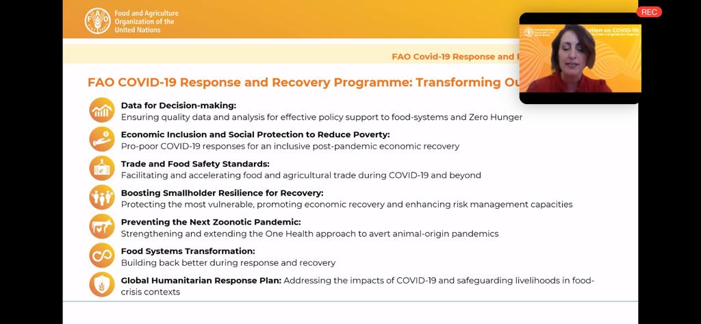During @FAO webinar on boosting #COVID19 response and recovery, @BethBechdol highlights 7 priority areas in the new FAO COVID19 Response and Recovery Programme. Cooperation with governments, regions and private sector paramount to prevent COVID crisis from becoming a food crisis