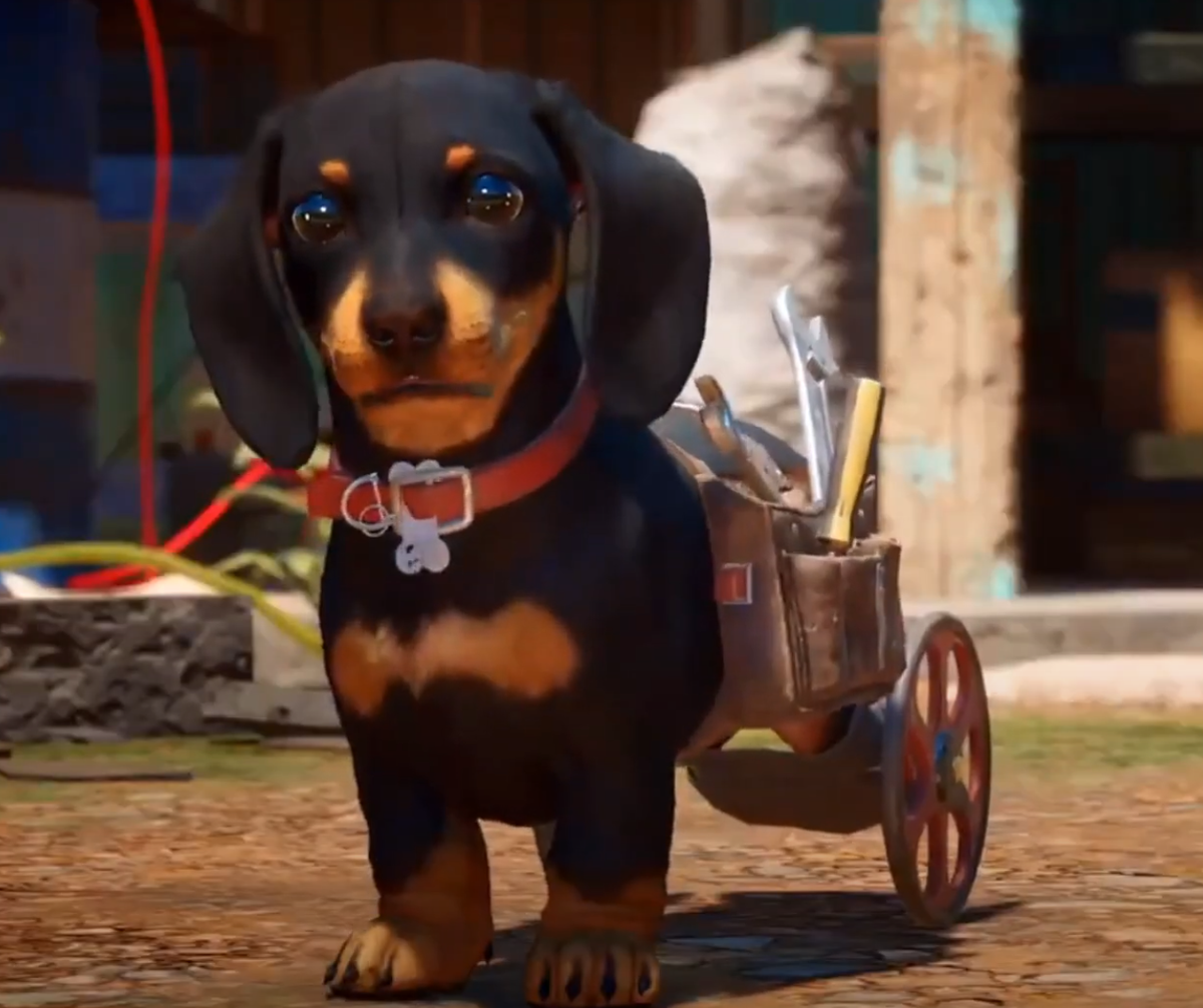 far cry 6 wiener dog