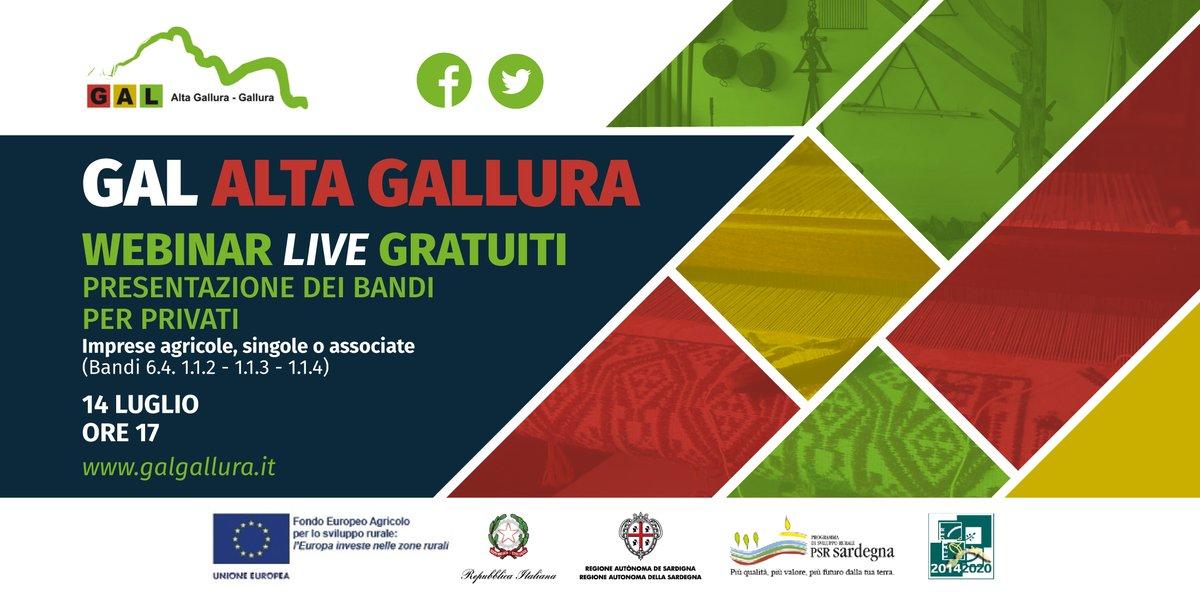 Gal_Gallura photo