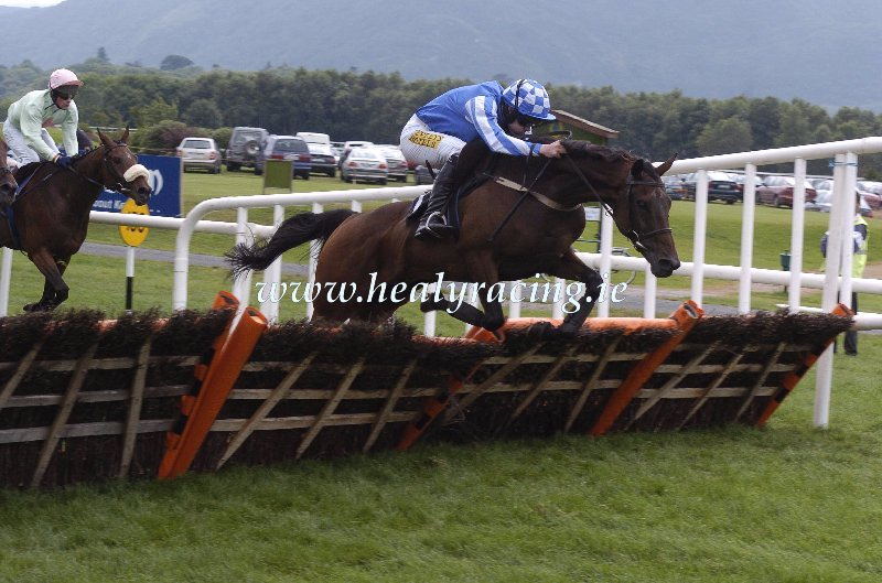 #FromTheArchives 15 years ago today 14-7-2005. @KillarneyRaces Native Stag and Ruby Walsh win for owner Marie McSharry and trainer @fatpahy152 (c)healyracing.ie