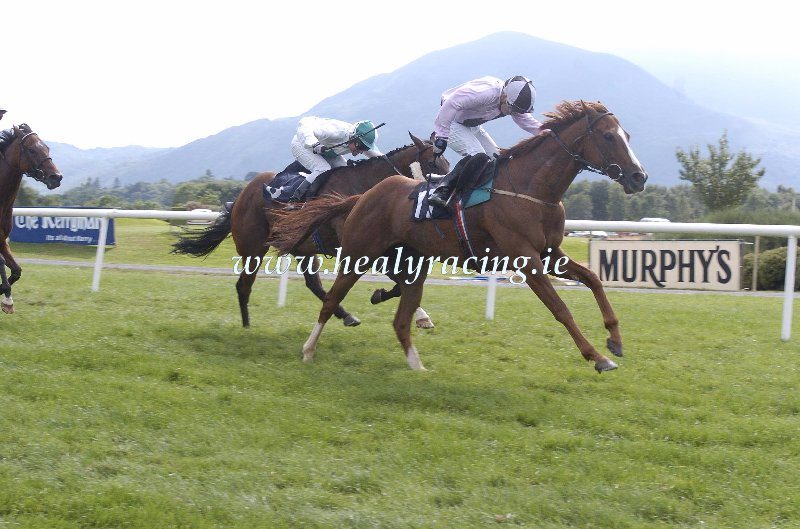 #FromTheArchives 15 years ago today 14-7-2005. @KillarneyRaces Littleton Telchar and @OsheaTadhg win for owner P ODriscoll and trainer Malachy Ryan. (c)healyracing.ie