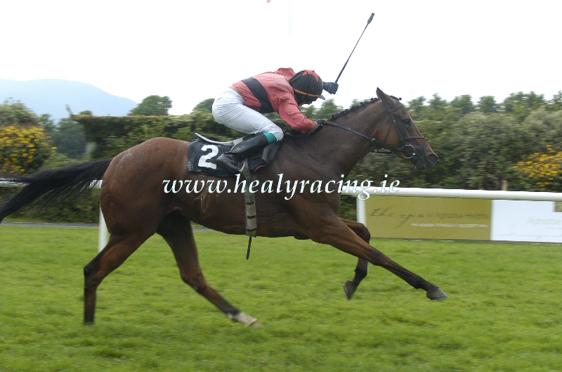 #FromTheArchives 15 years ago today 14-7-2005. @KillarneyRaces Togher Castle and @chrishayes24 win for owner Noel ODonovan and trainer Thomond OMeara. (c)healyracing.ie