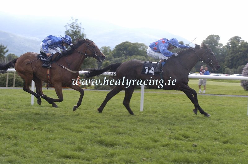 #FromTheArchives 15 years ago today 14-7-2005. @KillarneyRaces Persian Return and Niall McCullagh win for owners Eastern Racing Syndicate and trainer @patmartinracing (c)healyracing.ie
