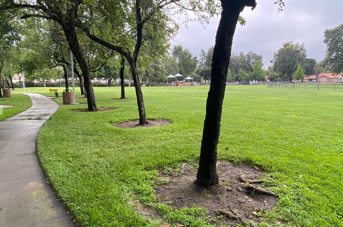 Tomorrow Poway Council will consider my SOS (Sharing Outdoor Spaces) initiative: allow local fitness biz & houses of worship to use areas in our parks until indoor restrictions lifted. https://t.co/BZKIHF85yn