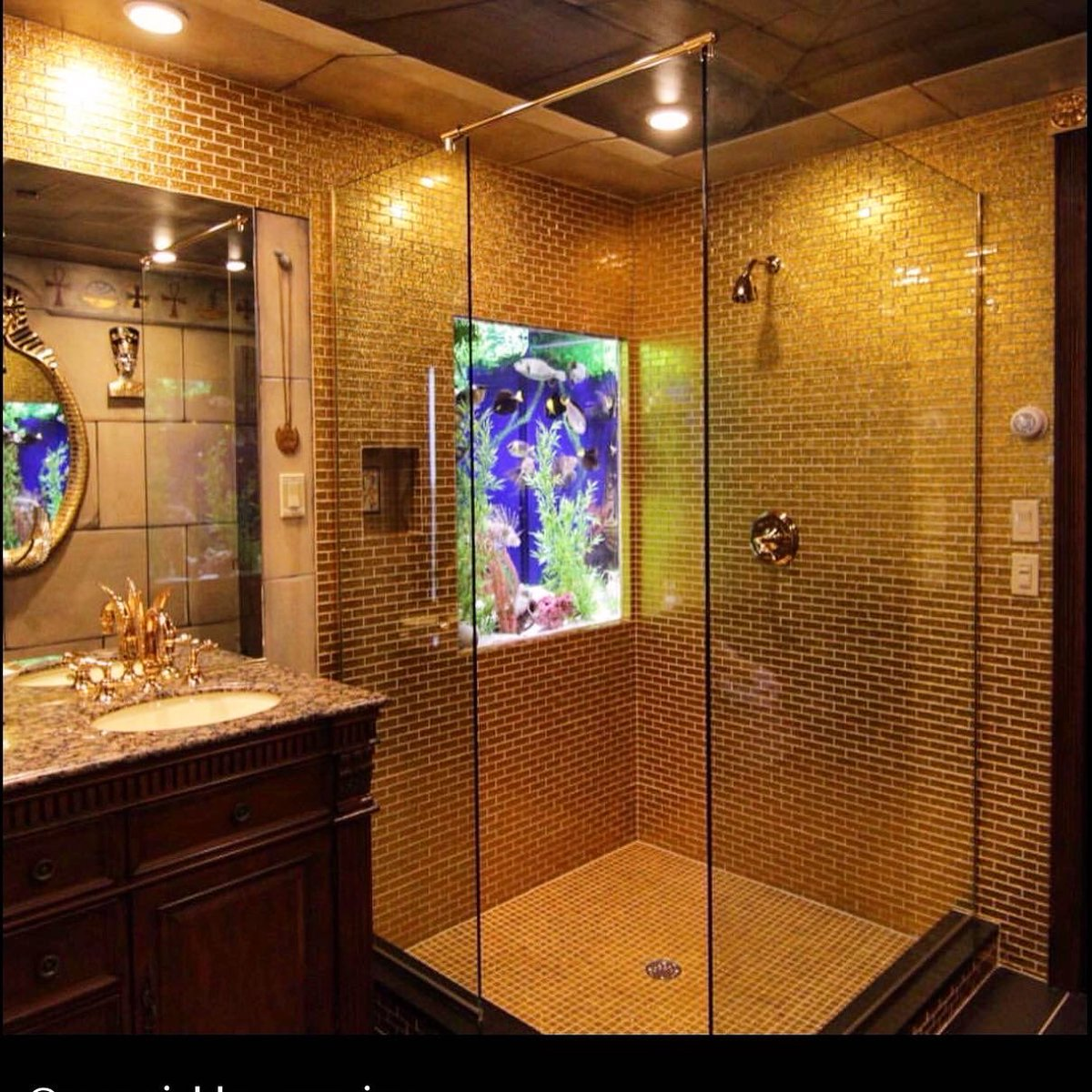 If you're going to install a fish tank in your #shower, you might as well surround it with Gold Glitter Glass #Tiles ✨  https://t.co/6yccBNRYRr #bathroomremodel #subwaytiles #glasstiles #backsplash #golddecor #designinspo #homedecor #bathroomdecor #designideas #interiordesign https://t.co/Olk2HUCFJp