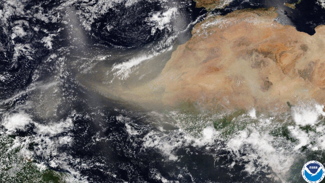 As an unprecedented amount of dust from the Sahara begins to cloak the U.S., it reminds us that #climatechange is impacting our #airquality and #lunghealth on a global scale. @LungAssociation #ClimateChangesHealth #docsforclimate #duststorm https://t.co/vBAyTOoKlK https://t.co/6qaijTEs7m