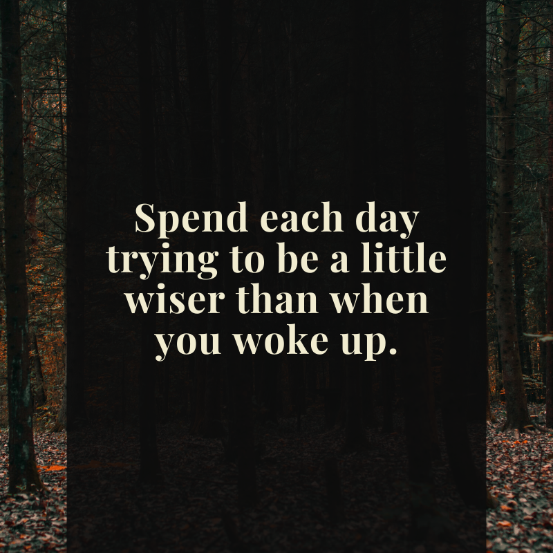 Spend each day trying to be a little wiser than when you woke up #USSLLC #motivation #motivationalquotes #success #love #inspirationalquotes #quoteoftheday #life #entrepreneur #inspire #successquotes #quote #goals #motivationalspeaker #mindset #instagood #business #lifequotes