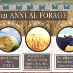 Image for the Tweet beginning: ⭐️ REMINDER! ⭐️ 2021 Annual Forage