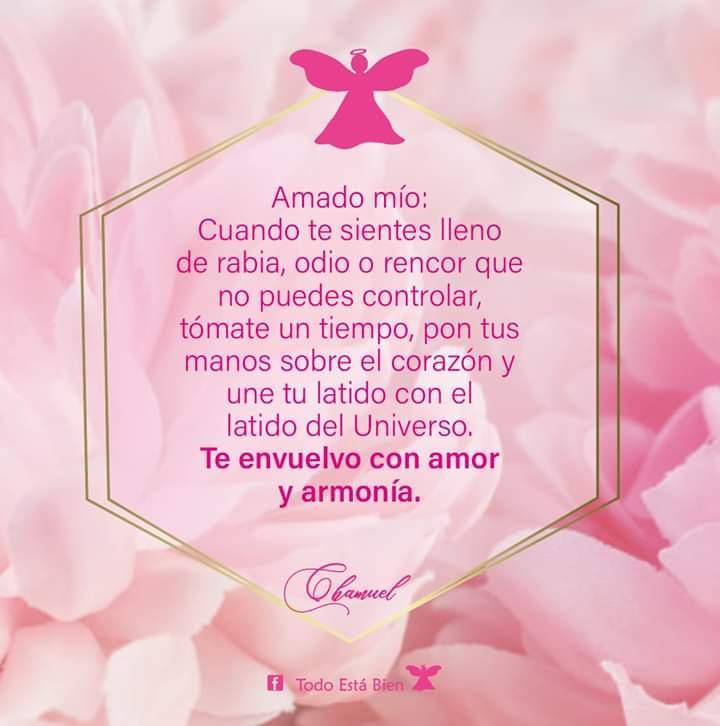 #MensajeAngelical #ArcangelChamuel #LetyNeri #mensaje #frases #decretos #mensajedeldía #Dios #ángeles #arcángeles #amor