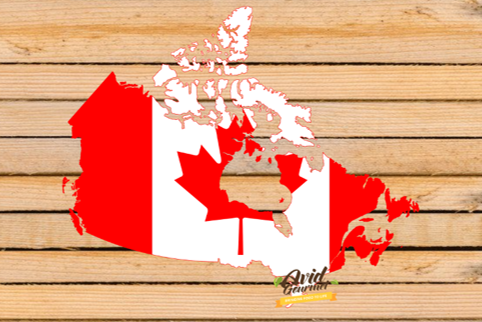 It's important that we are supporting local when possible! Weworking with so many amazing, Ontario based businesses. We also have the pleasure of working with many  Canadian companies across the country as well  Let us know if you have questions about our Canadian products! pic.twitter.com/4q6ooCxqGx