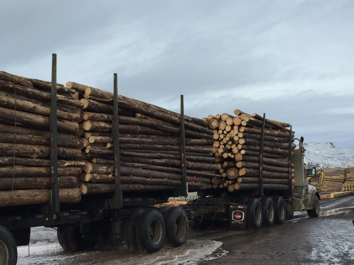 """""""The Province is encouraging the use of mass timber in the construction industry with the hope of breathing life back into our beleaguered forest sector."""" https://www.radionl.com/2020/06/22/mass-timber-could-help-the-interiors-forestry-sector/…  #masstimber #wood #woodisgood pic.twitter.com/LqtqK1g6lK"""
