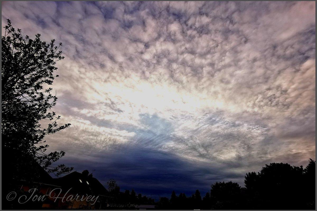No Sunset again tonight, its blummin cold! Got some nice clouds before the gloom. #gardening #photography #BeKind #art #savethebees #pollinators #mentalhealth #LoveNature #lovewildlife #mondaythoughts pic.twitter.com/tmIWj2UALD
