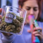 Image for the Tweet beginning: #cannabis #weed #marijuana Nashville will