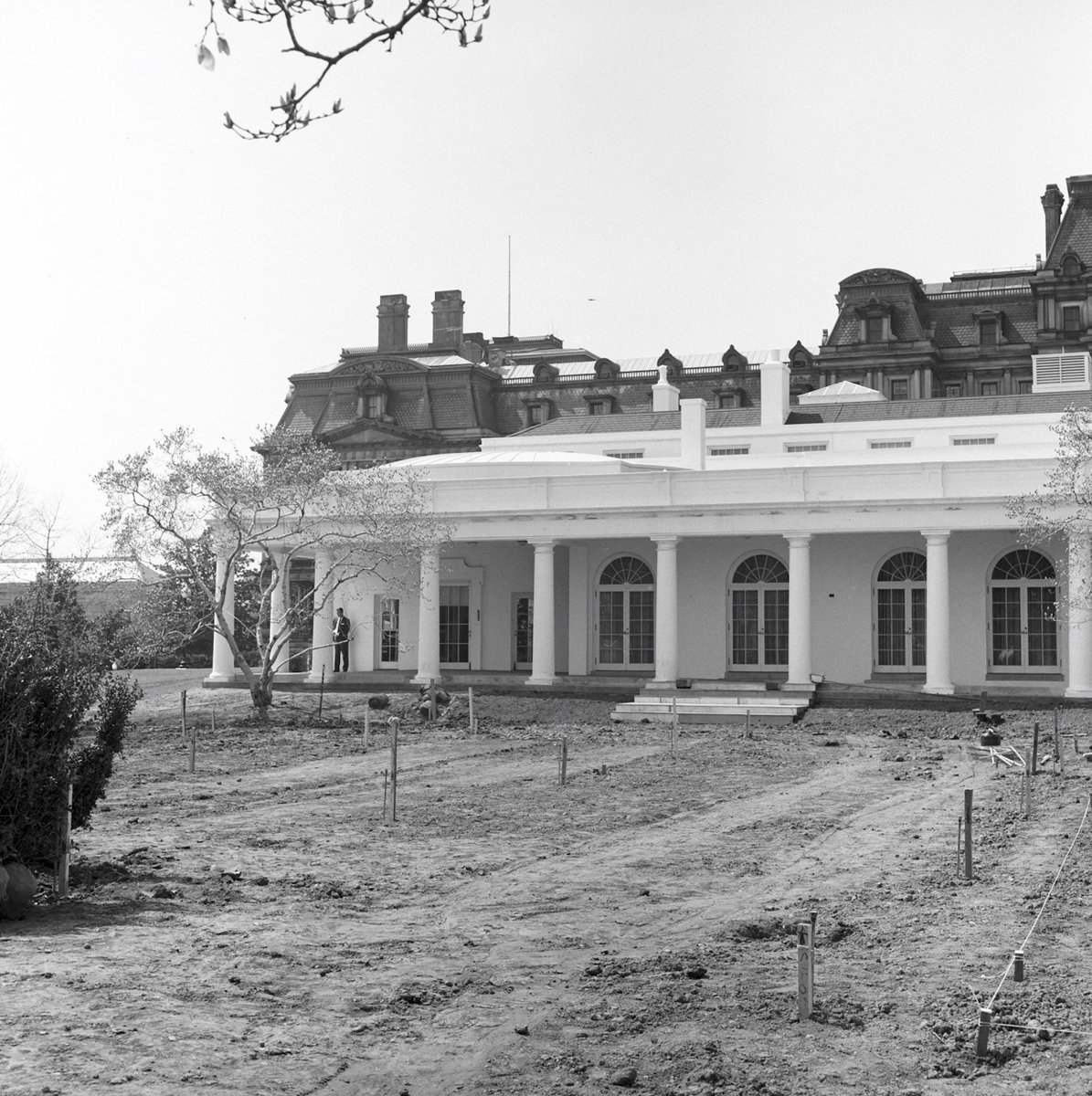 White House Rose Garden being reconstructed, 1962: #JFKL