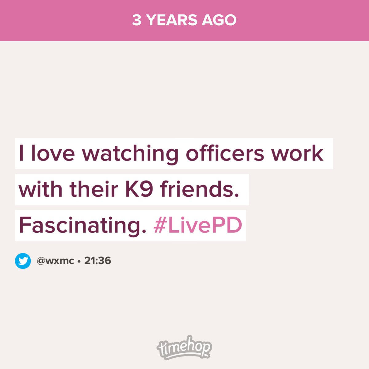 One major thing we miss because #LivePD got unceremoniously dumped. I miss the K9s. https://t.co/O1yis6u38g