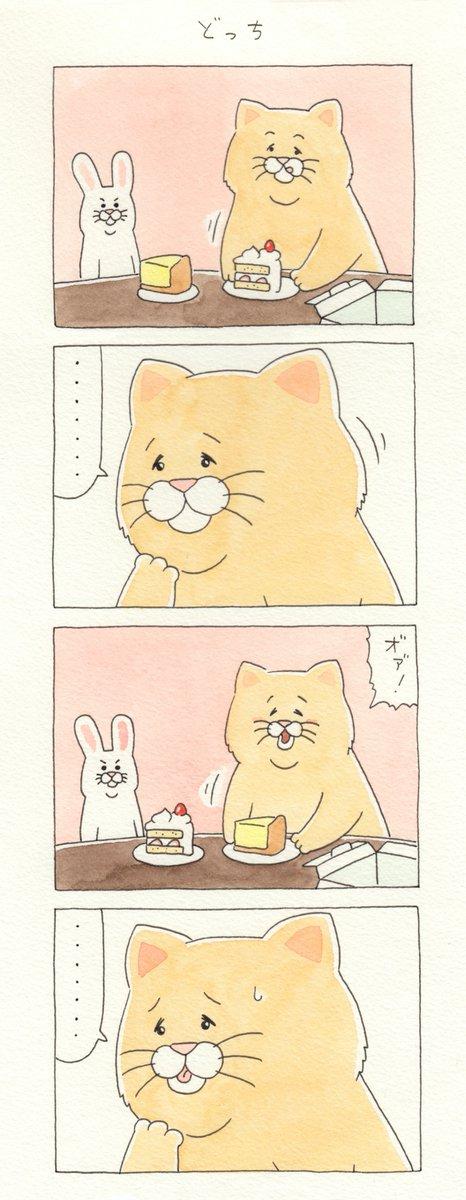 8コマ漫画ネコノヒー「どっち」/Which one  単行本「ネコノヒー3」発売中!→ #ネコノヒー