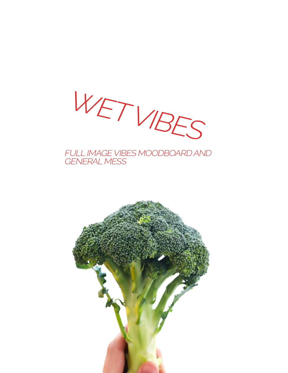INTRODUCING: WET VIBES A fun Kaitlyn Orcastraw moodboard and general neat booklet, through 7 double-sided pages of fun! Available: Right here. Or on my site!! https://t.co/7k6uEtkQoT https://t.co/weDgsdOWZS