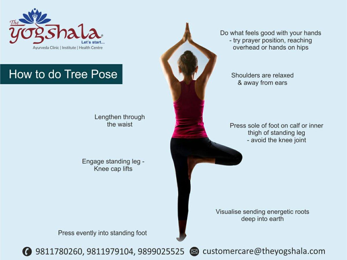 #TreePose  Perfect Tree Pose Yogasana?  https://t.co/BspqSJV1aY  #Theyogshala #Yoga #AyurvedicClinic #YogAsana #BeHealthy #HealthTips https://t.co/XgtCeYuzqe