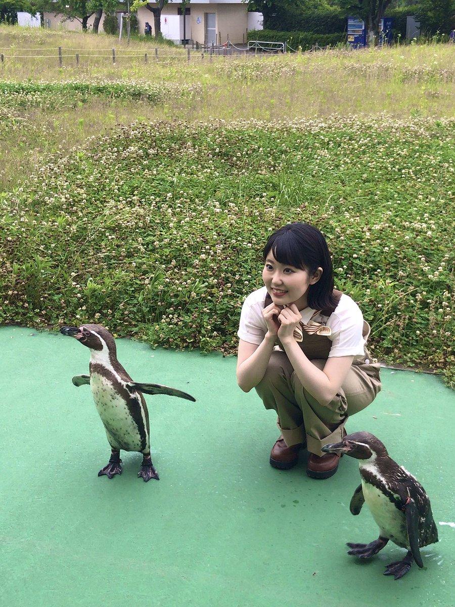 【配信スタート♪】Wonder Love」お楽しみいただけていますでしょうか!くわっくわっ♪恋する乙女っぽさや、ペンギン愛を歌詞にぎっちり込めました!きゅんきゅんしたり、クスッとしていただけたら嬉しいです!ジャネット撮影は、ペンギンちゃんと…💕むふふ💕(東山奈央)