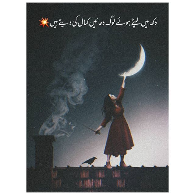 Follow me for more poetry Follow for more@iamAtiqRajpoot • • • #kareenakapoor #kareenakapoorkhan #shahidkapoor #shraddhakapoor  #deepikapadukone #salmankhan #aamirkhan #shahrukhkhan #ranveersingh #ranbirkapoor #saraalikhan #saifalikhan #kartikaaryan #salkat #deepveer #randeepic.twitter.com/PqTO1ksP55