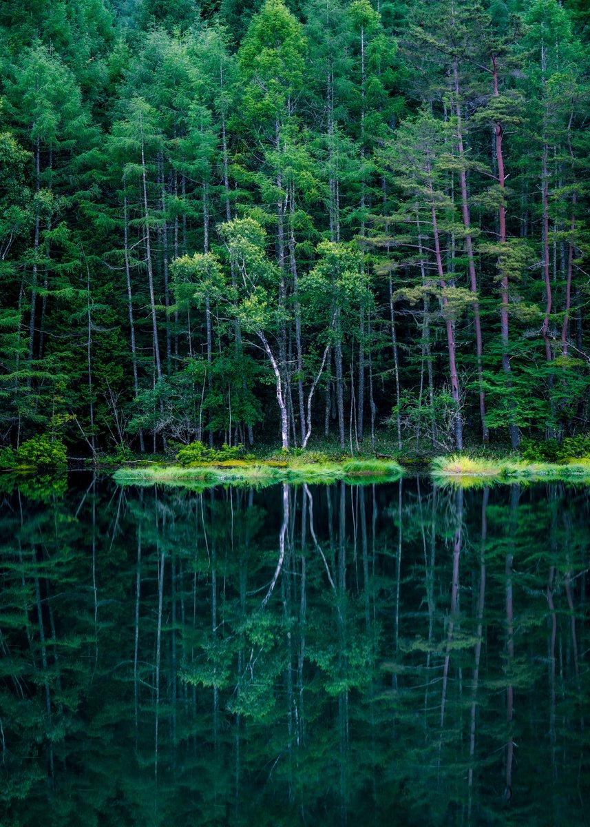 長野県にある御射鹿池新緑リフレクションがもはや鏡。