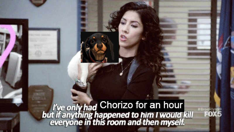 far cry 6 wiener dog