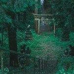 雨の日に鳥居をくぐると異世界へ…幻想的な雰囲気が別の世界へ繋がっていそうな福井県の稲荷神社!